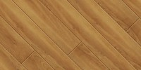 plank wood spalted beech W771